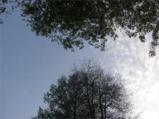 20100507
